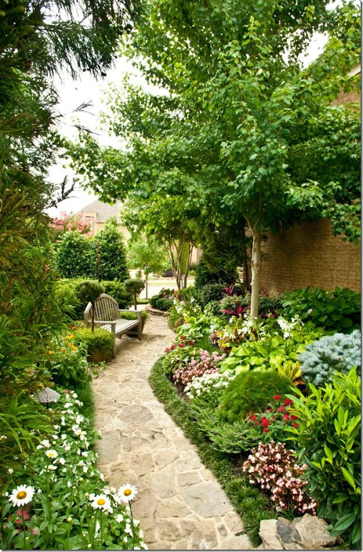 Small spaces between houses. Or do a wide bed filled with all kinds of flowers and plants to add color.