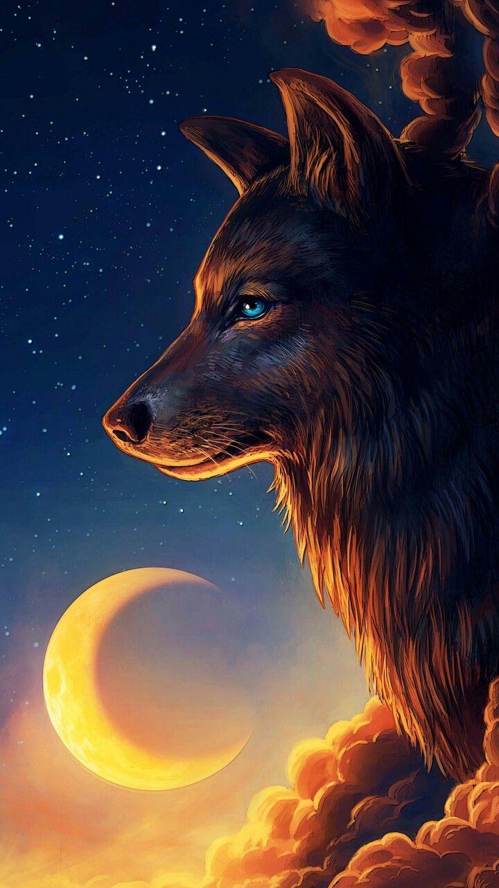 Sfondi di animali lupi