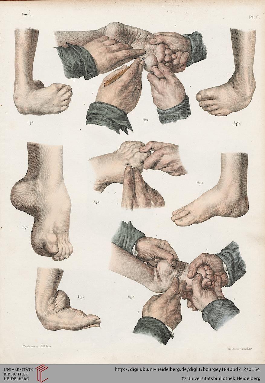 Facsimile | tutos | Pinterest | Zeichnen lernen, Anatomie und Zeichnen