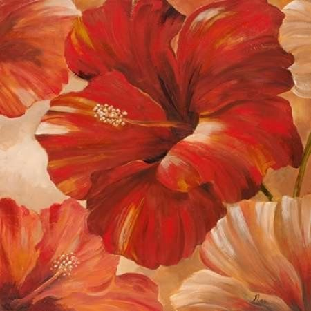 Sunlit Bloom II Canvas Art - Nan (24 x 24)