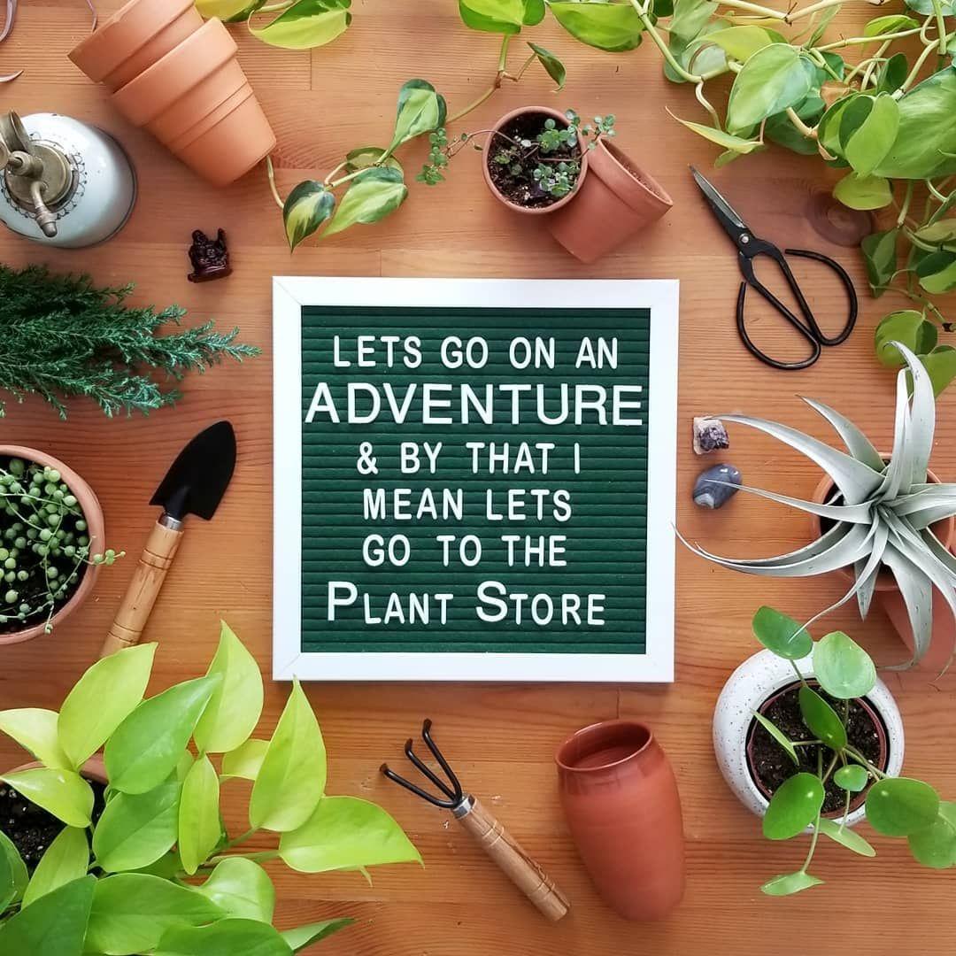 Let S Go On An Adventure Letterboard Plants Plant Signs Plants Quotes Plants