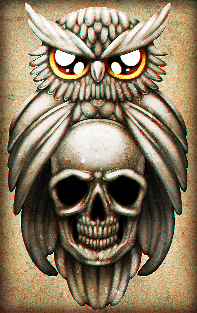 How to Draw an Owl and Skull Tattoo, Step by Step, Tattoos