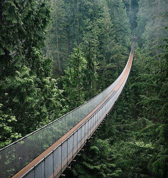 Places To Visit In Vancouver During Summer: Capilano Suspension Bridge Park