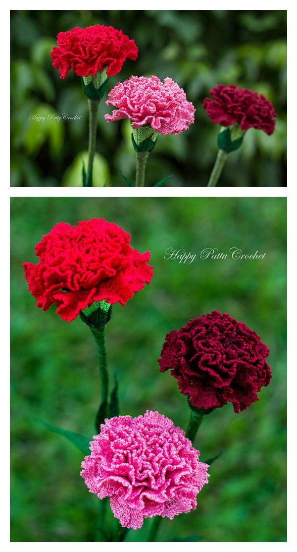 Crochet Carnation Flower Patterns For Mother S Day With Images