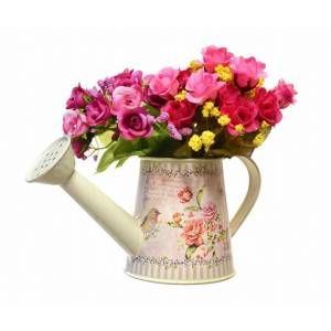 Decotown Kuş Gül çiçek Sulama Kabı Ve Saksı çiçekler