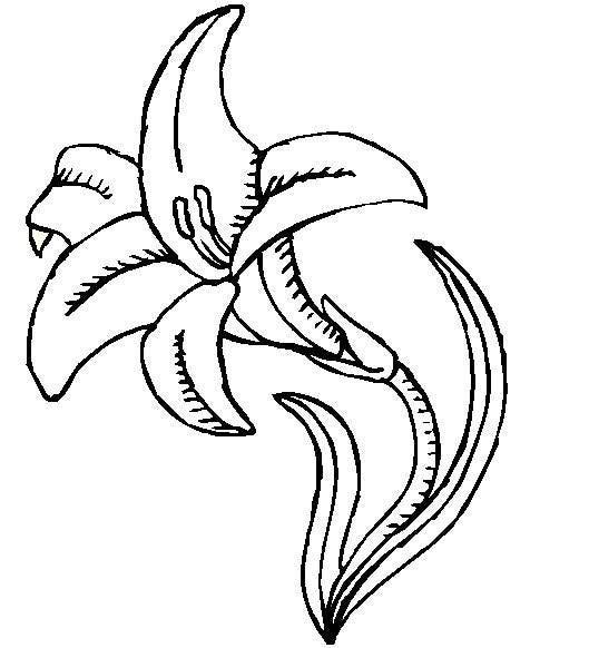 Easter Lilies Ii On Crayola Com Spring Coloring Pages Spring