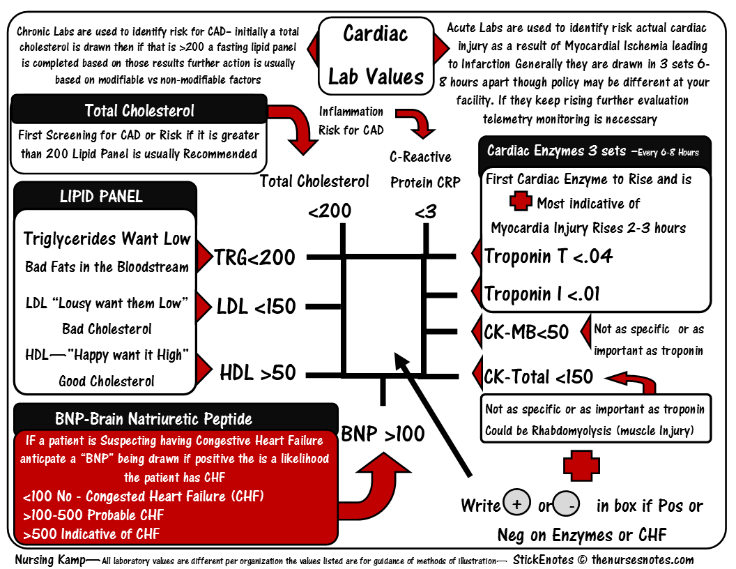 Fishbone Diagram Lab Values Normal Well Pump Parts Cardiac Enzymes Cheat Sheet Mnemonic Nursing