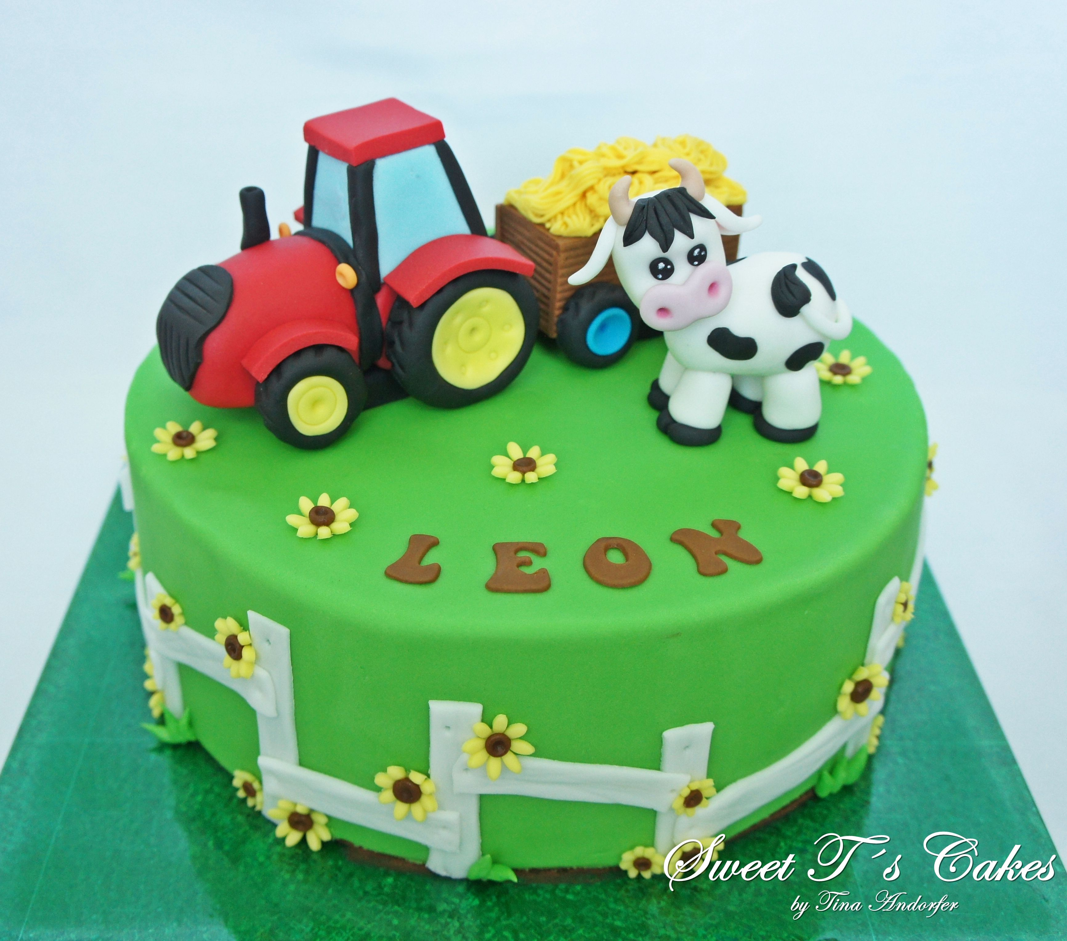Pin Von Tina Andorfer Auf My Cakes Mit Bildern Backen Kindergeburtstag Kindergeburtstagstorte Tortendeko
