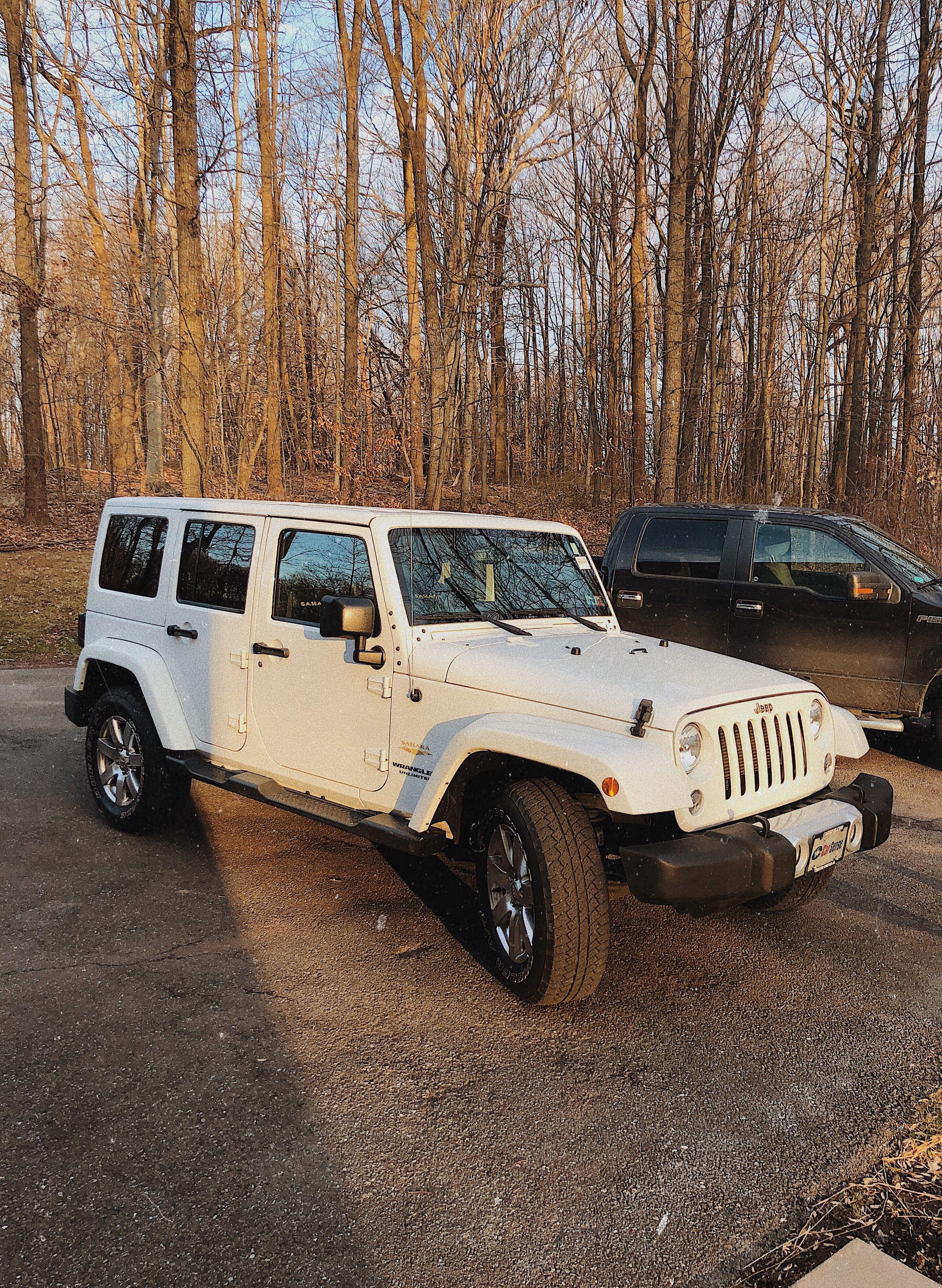 Jeep Wrangler Artsy