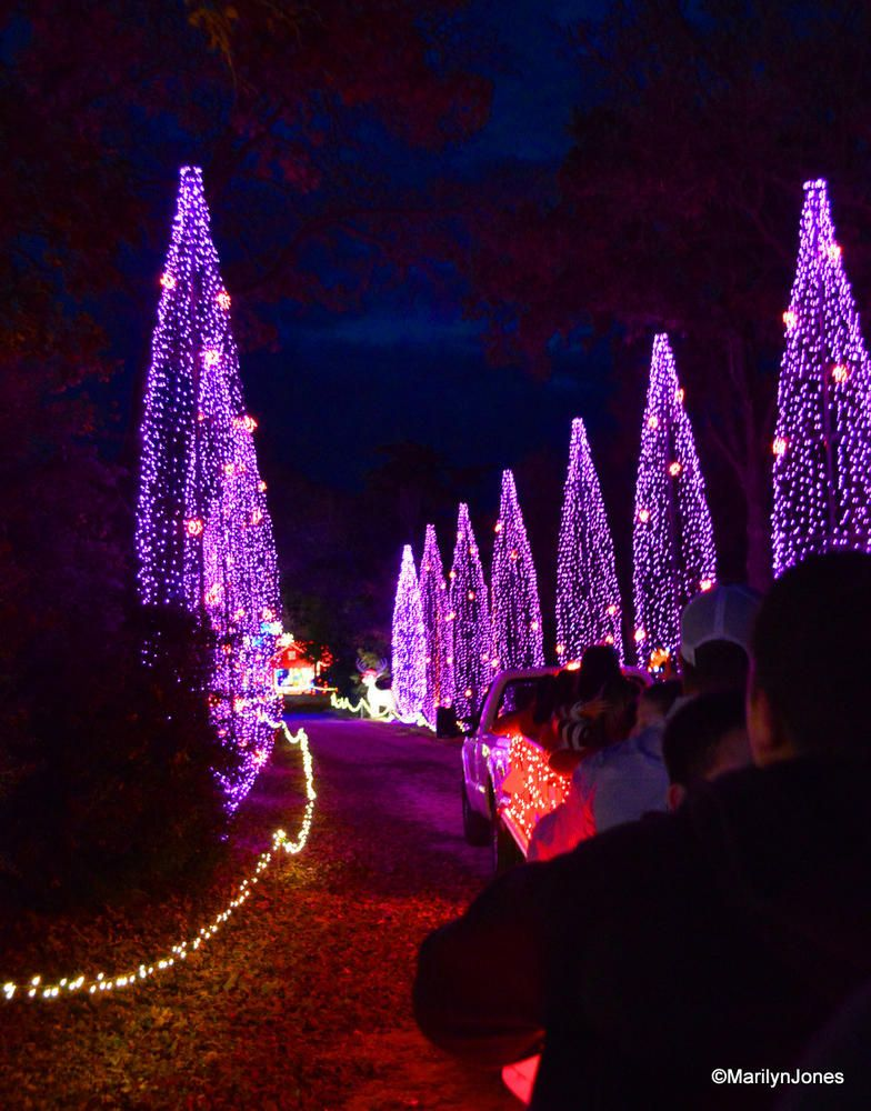 Santa's Wonderland, College Station, Texas - Gumbo's Pic Of The Day, December 24, 2014: Santa's Wonderland