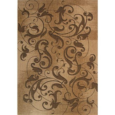 Kannapolis Rectangular Brown Transitional Indoor Outdoor Woven Area Rug Common X Actual