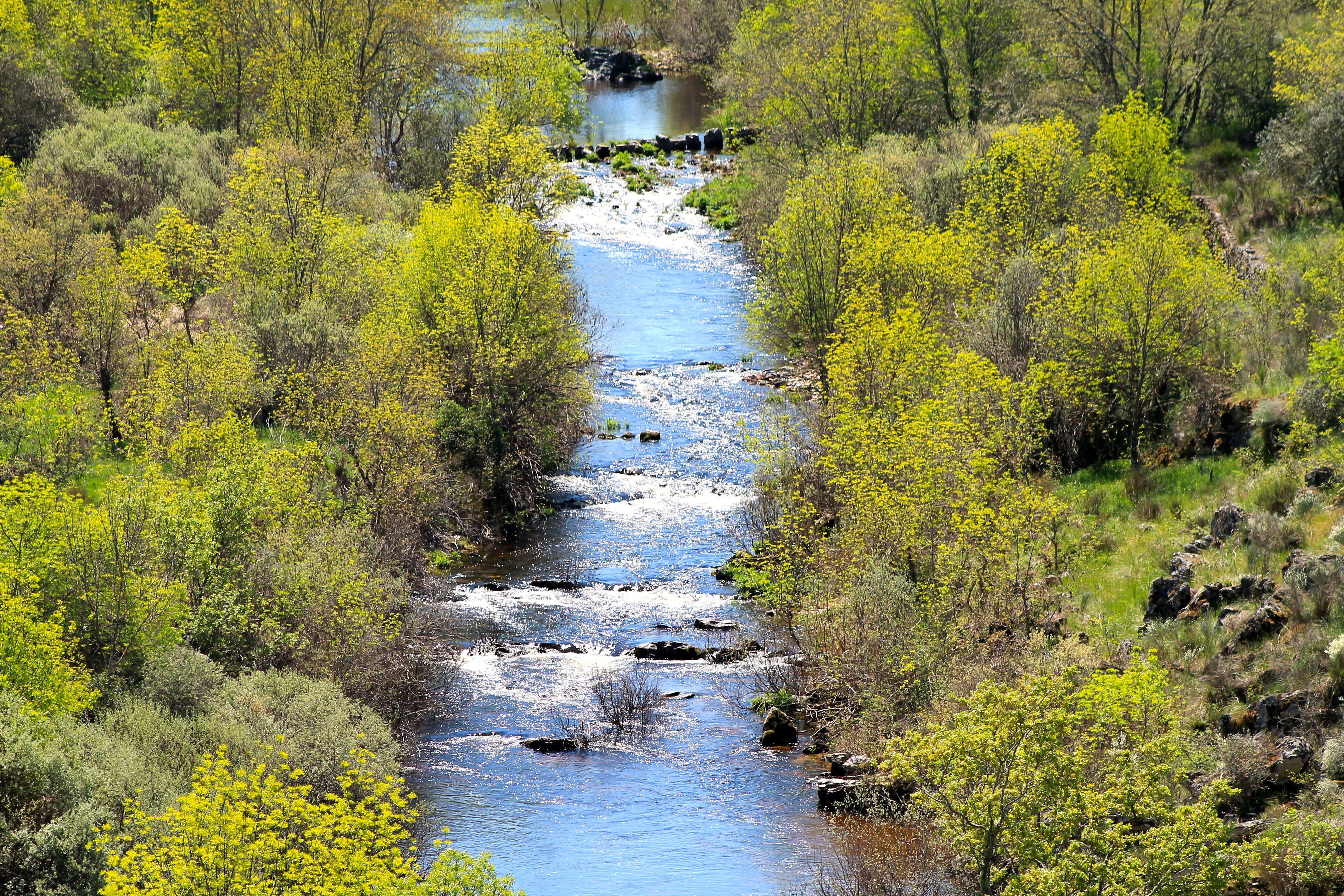 Frühlingserwachen im Arribes del Duero Naturpark