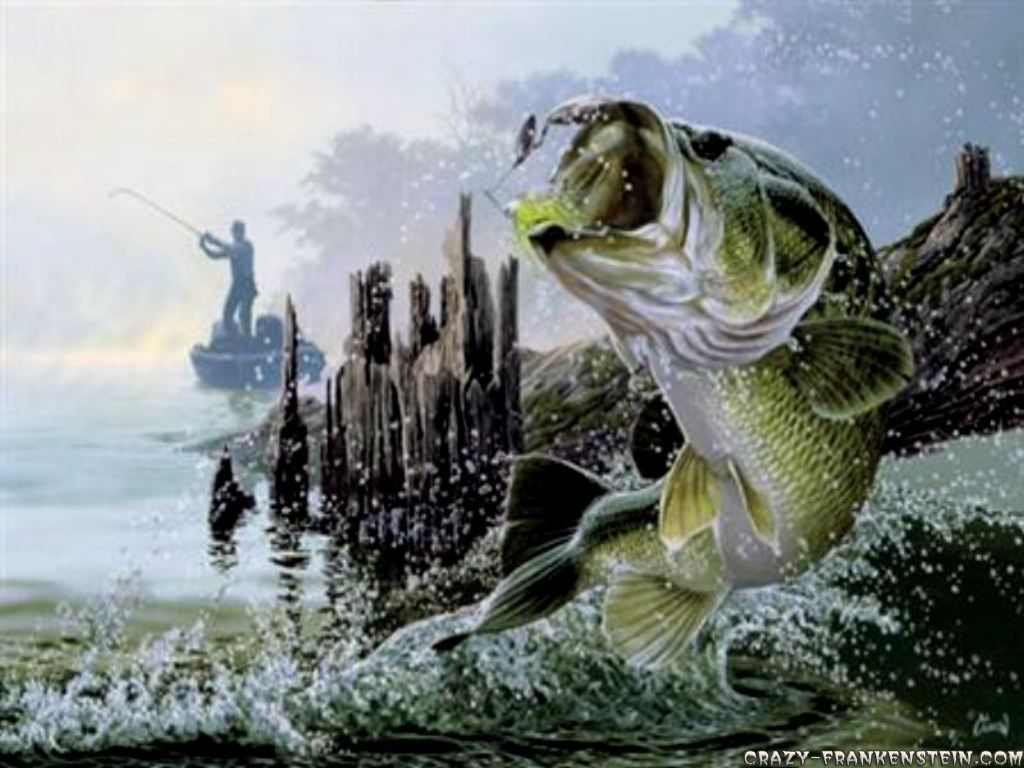 Fly Fishing Wallpapers Wallpaper Fish Wallpaper Fish Painting Fish Art