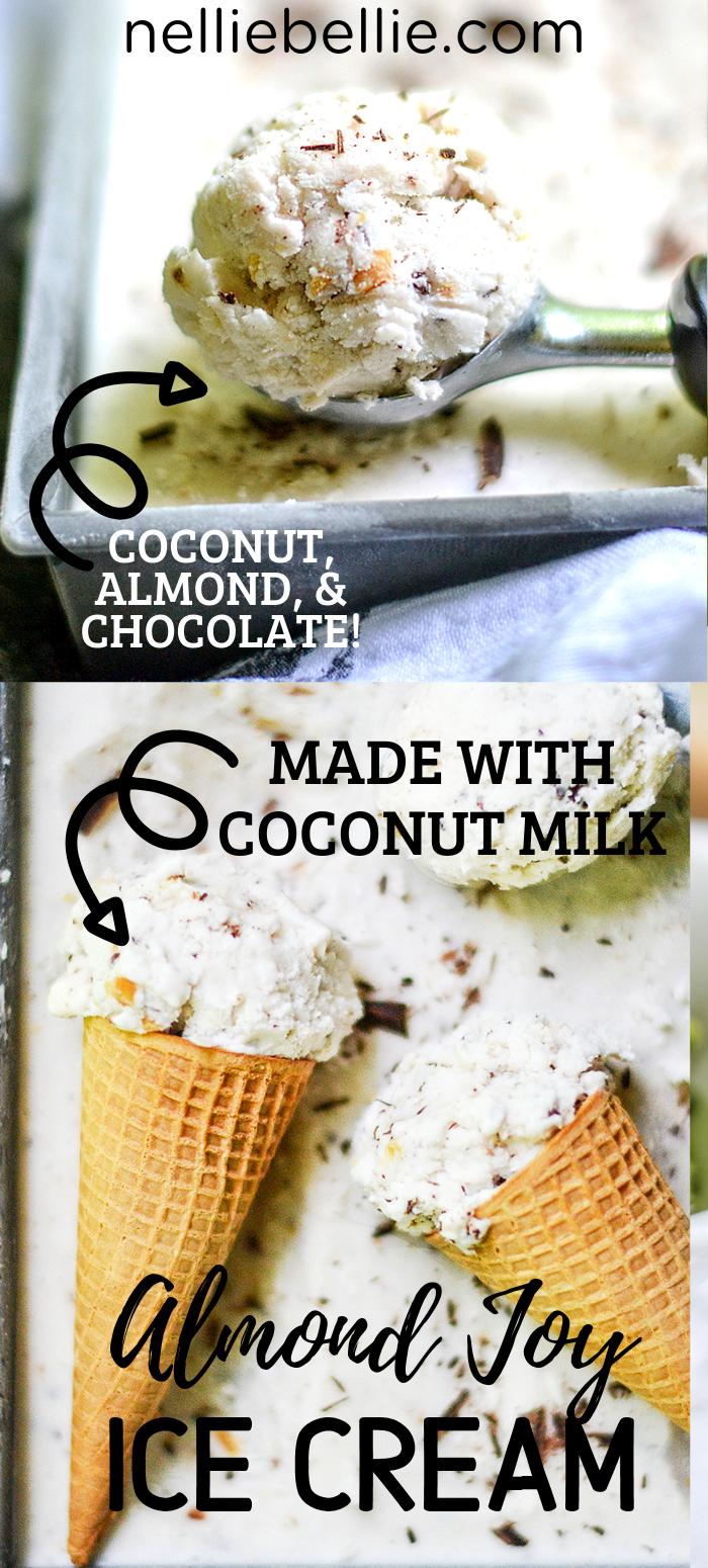 Easy Homemade Ice Cream Made With Coconut Milk No Eggs Or Condensed Milk Homemade Ice Cream Recipes Machine Coconut Milk Ice Cream Homemade Ice Cream Recipes
