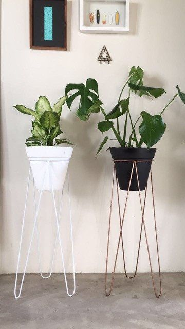 ARKIVIO: Each pot plant stand is welded together from hand cut and bent 6mm mild steel rods with the choice of powder coat in white or black (R690), or electroplate in copper (R890). The stand measures 72cm in height with a central ring diameter of 22cm to accommodate the medium sized terra-cotta and plastic pots. Due to the lead times on powder coating and electroplating, we keep this item in stock in small numbers.
