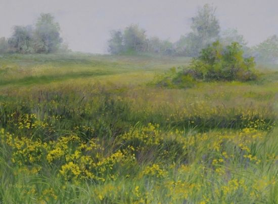 "Buttercups#2 by Kathy McDonnell Pastel ~ 12"" x 16"""