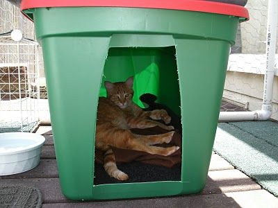 Cat Shelter From Storage Bin Great For Solar When She Stays Out Late Add A Heating Pad Colder Nights