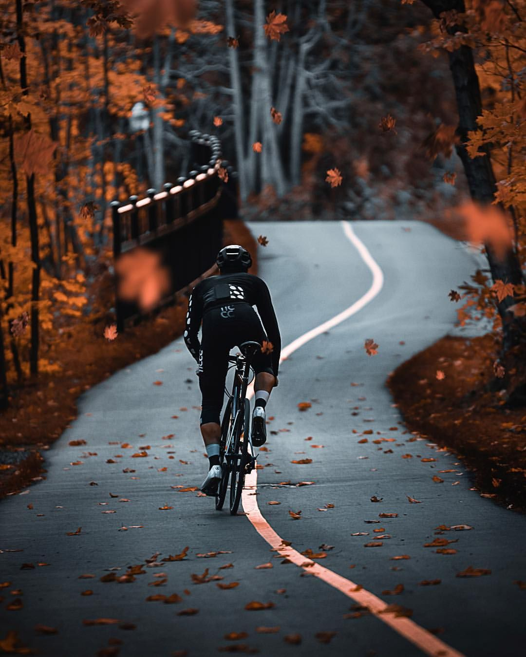 Instagram Alexcormier97 Cycling Autumn Autumnleaves