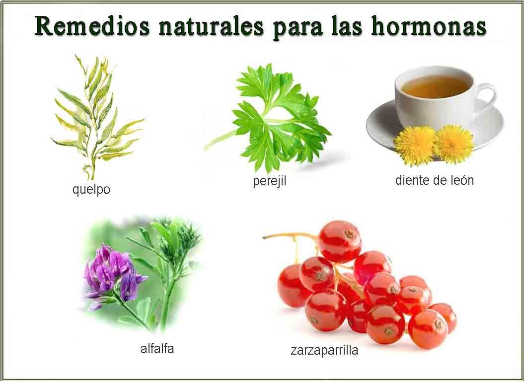 Remedios Naturales Para Regular Las Hormonas Remedios Naturales Remedios Hormonas