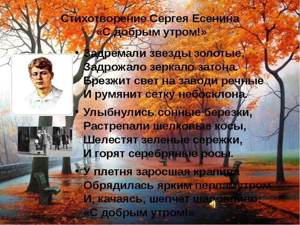 Есенин стихи открытки, день
