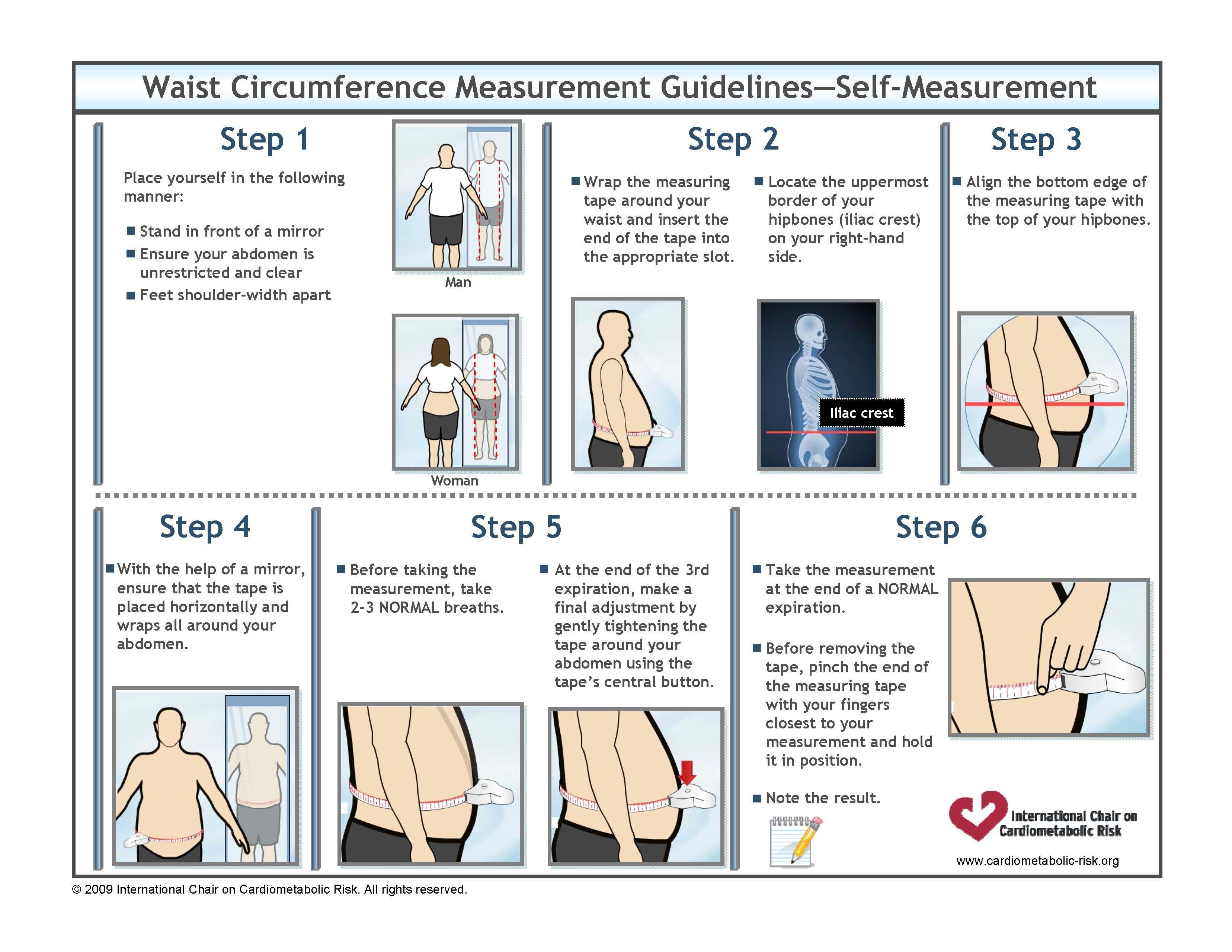 Modern Iliac Crest Anatomy Pattern - Anatomy Ideas - yunoki.info