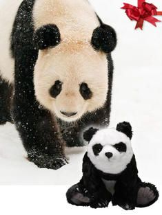 World Wildlife Fund Species Adoptions at the WWF Gift Center Adopt an African Elephant, Jaguar, Panda….save the animals of the world!