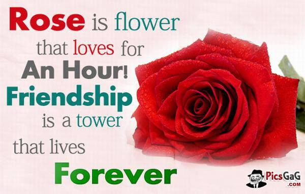 Friends Quotes Rose Forever Red Rose Pictures Beautiful Rose Flowers Rose Love Quotes