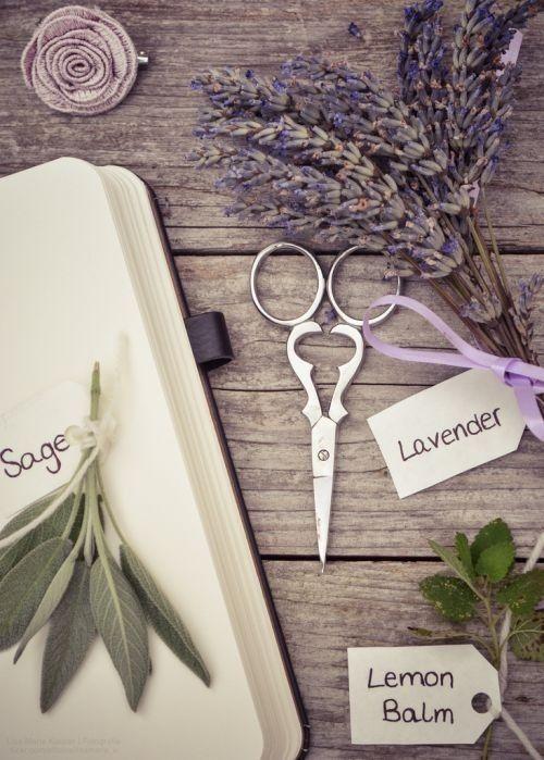 Sage and labender
