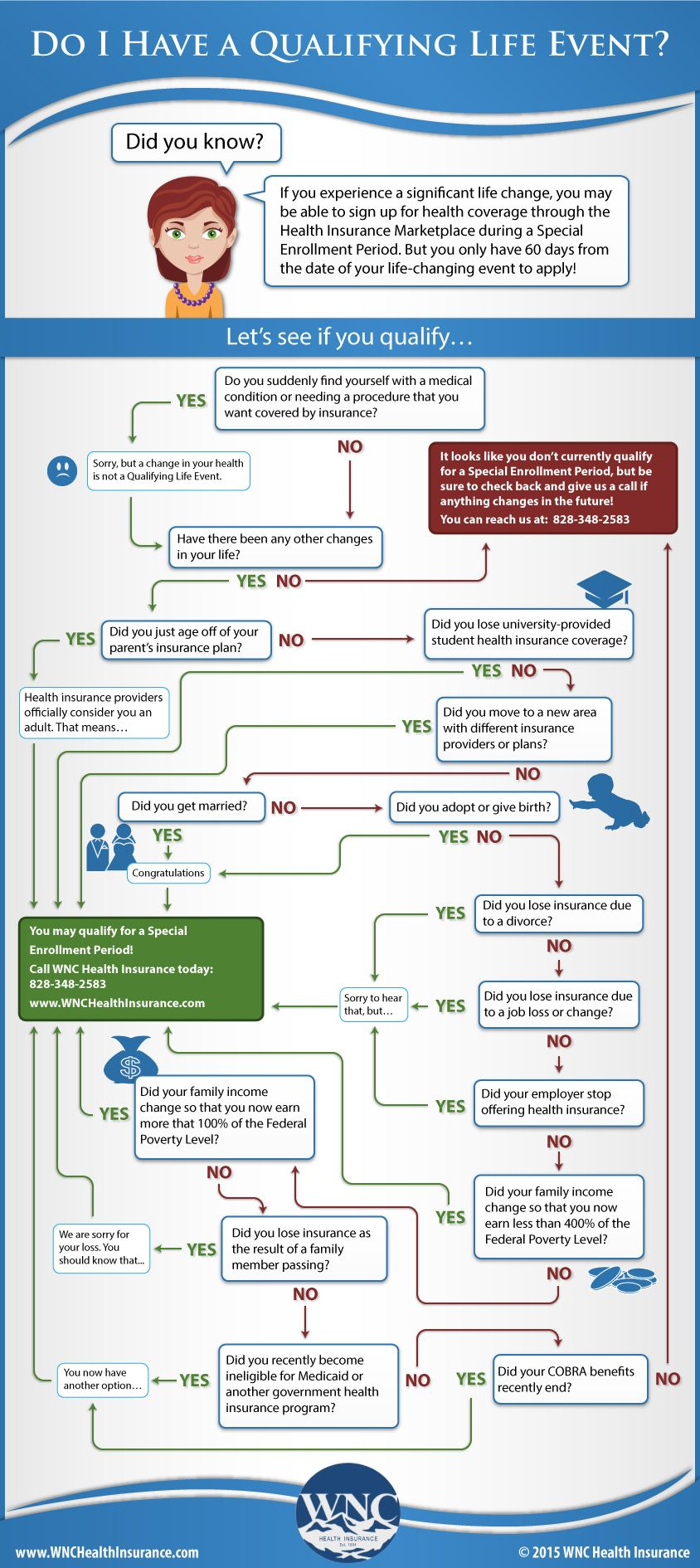 A Qle Flowchart Life Insurance For Seniors Dental Insurance