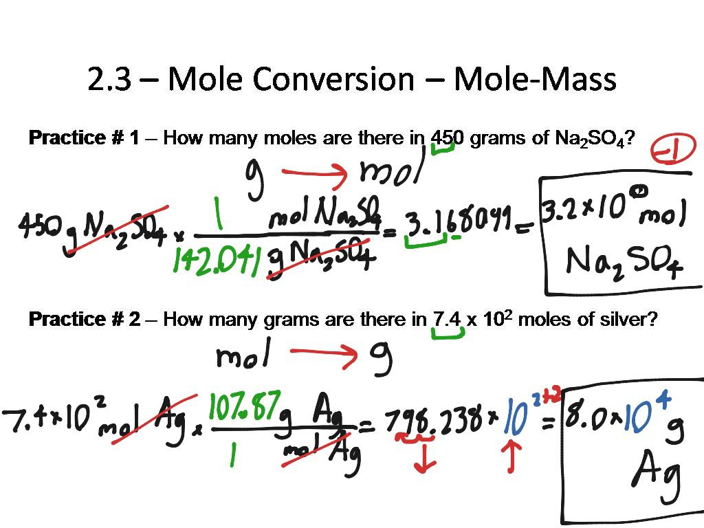 A Mole Conversion Is When The Mole Is Able The Measure