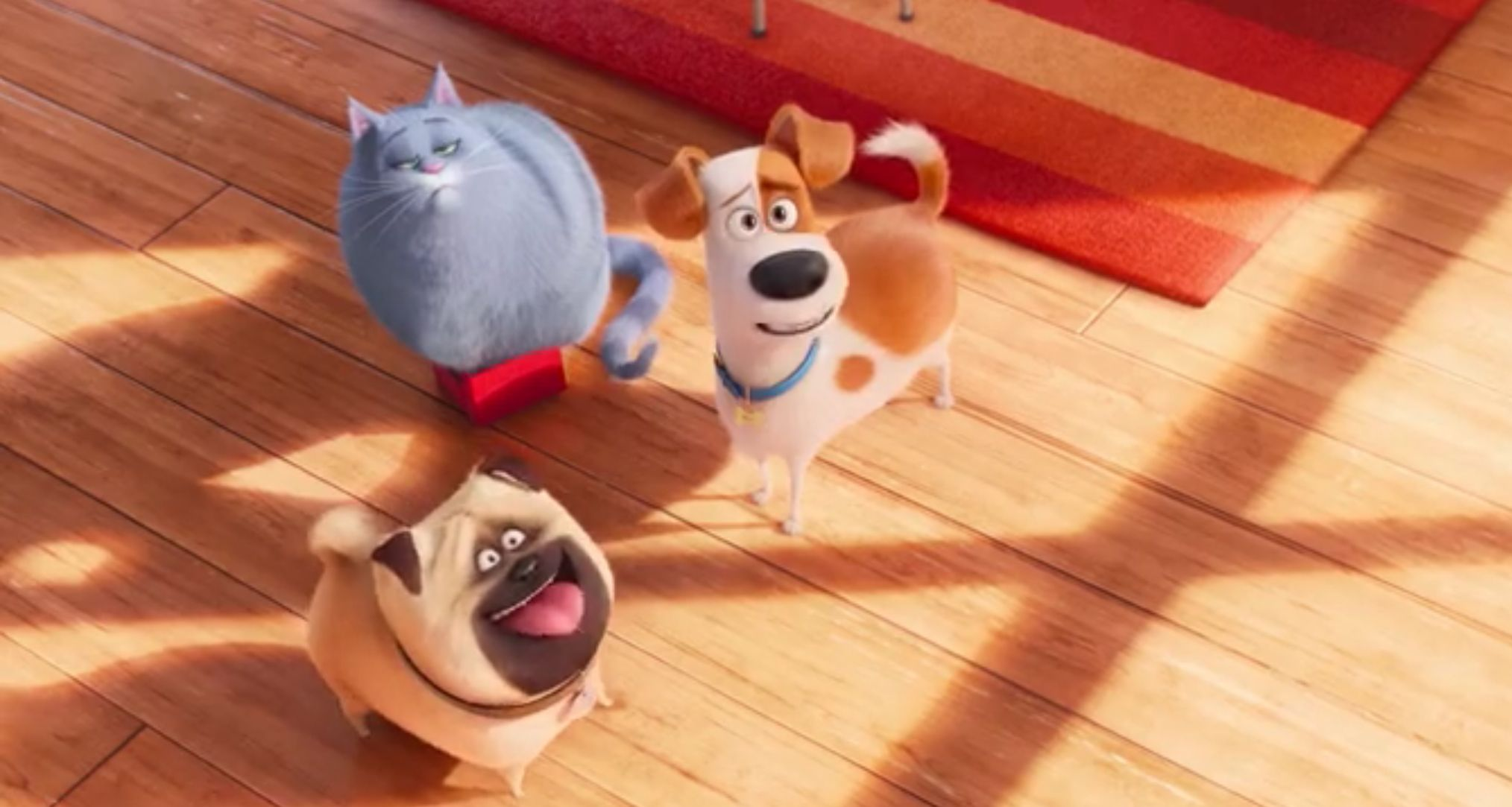 Pin By Jeffrey Gayle Hay On The Secret Life Of Pets Secret Life Of Pets Secret Life Pets