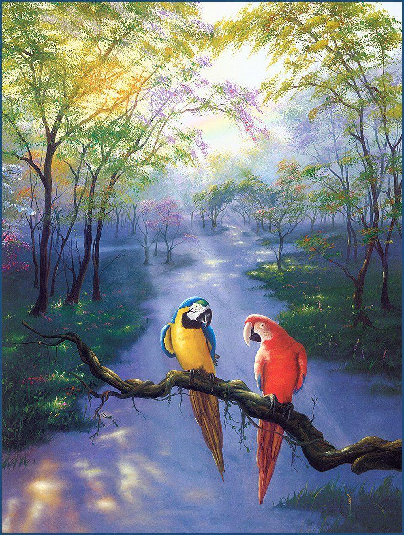 * Jim Warren - - - Colors of the Rainbow
