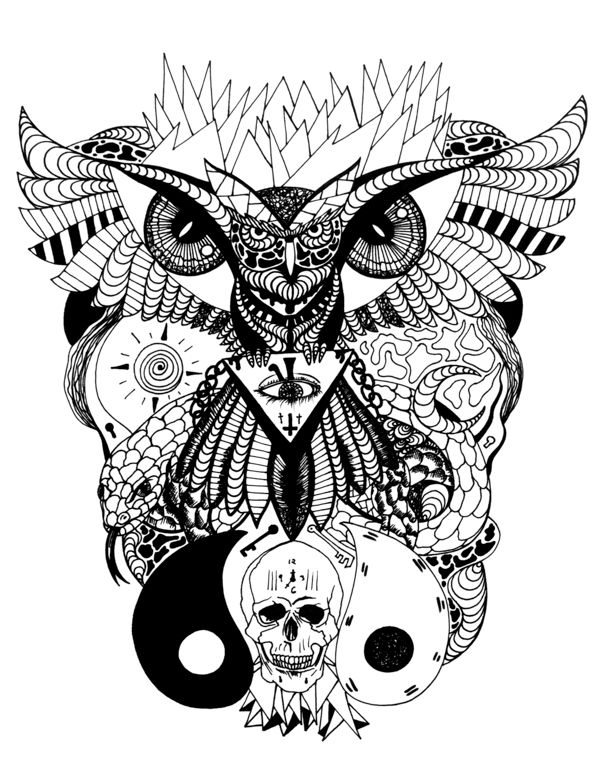 Wise Owl And Ageless Skull