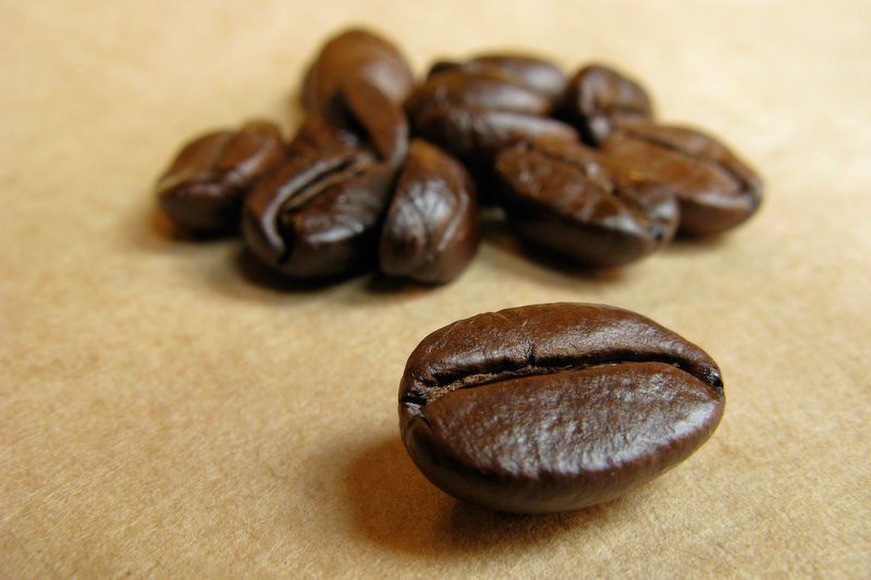 Coffee and its Impact on People, Animals and the Planet