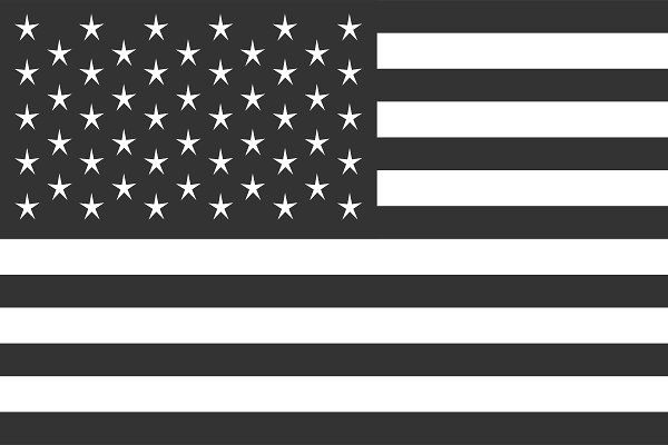 Usa Flag Vector American Flag Black Flag Vector American Flag Art American Flag