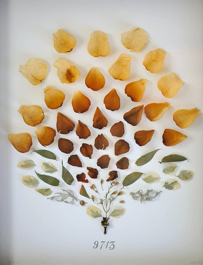 eine neue Blüte – DIY- und Handwerksprojekte, Inneneinrichtung, Stil und Rezepte: DIY Dri …