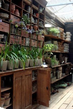 paradis express: nursery/jardinerie
