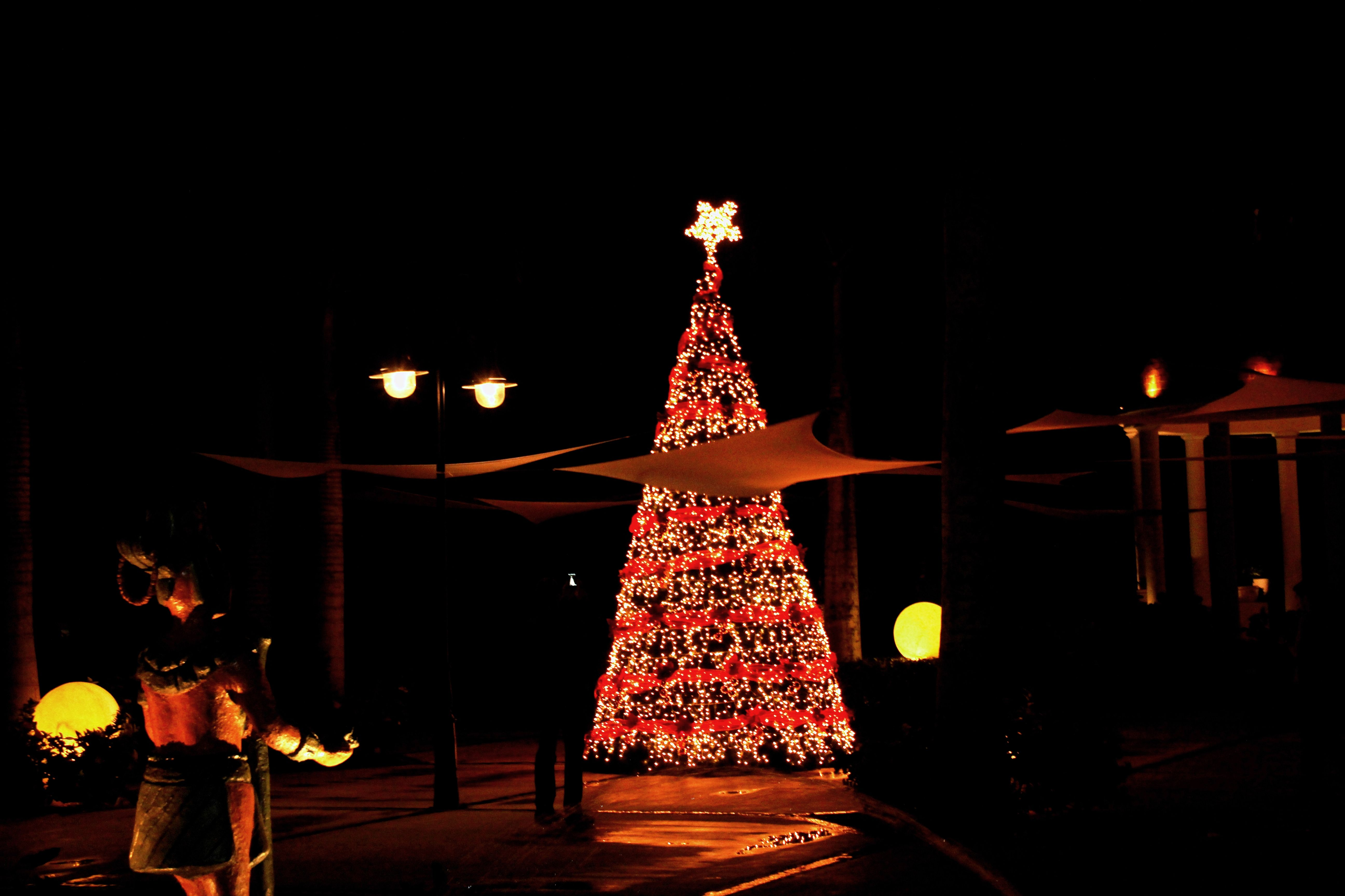 christmas tree at excellence riviera cancun happy holidays d