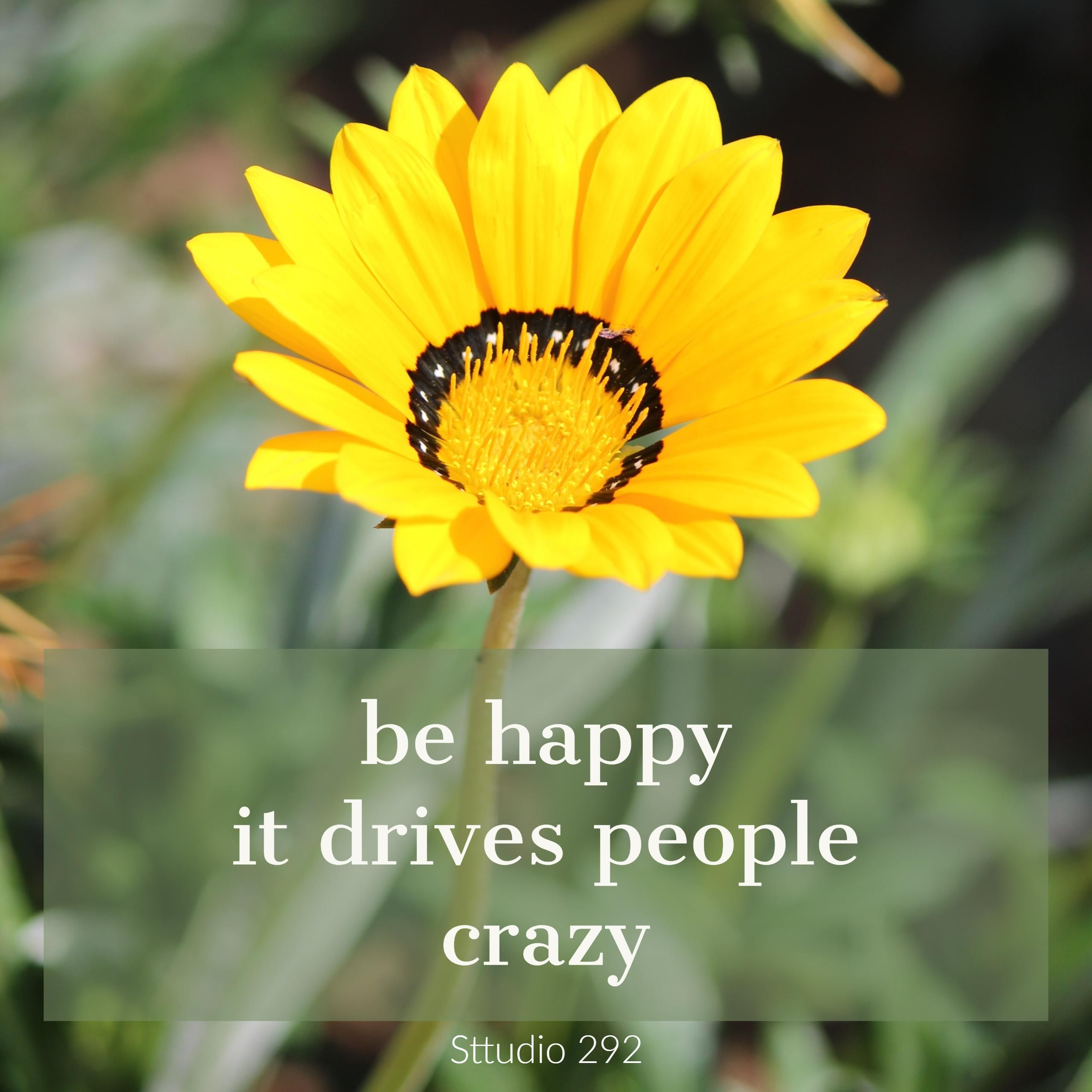 Beautiful Yellow Blanket Flower Quotes On Happiness With Flower