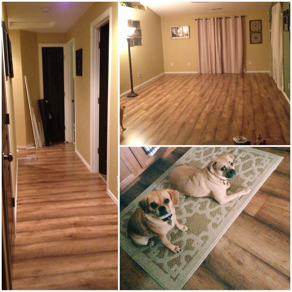Shaw Laminate Flooring Style # 0296U Color # 00291