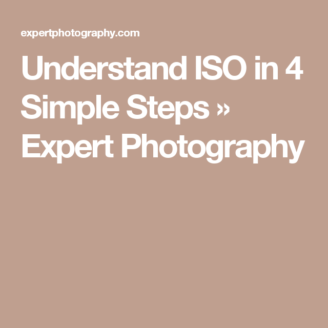 What Is Iso   And How To Use It In 4 Simple Steps