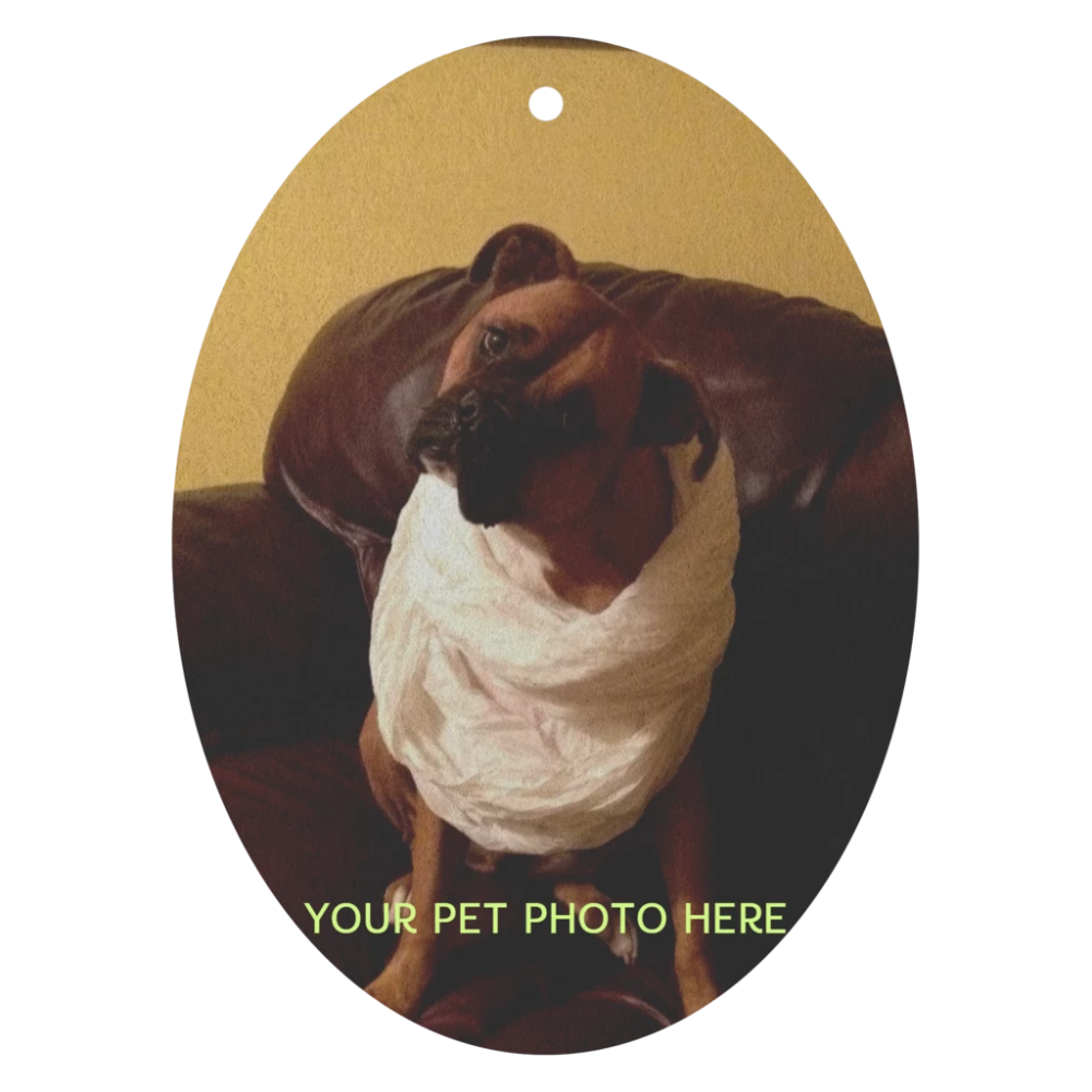 Personalized AIR FRESHENER! (With images) Air freshener