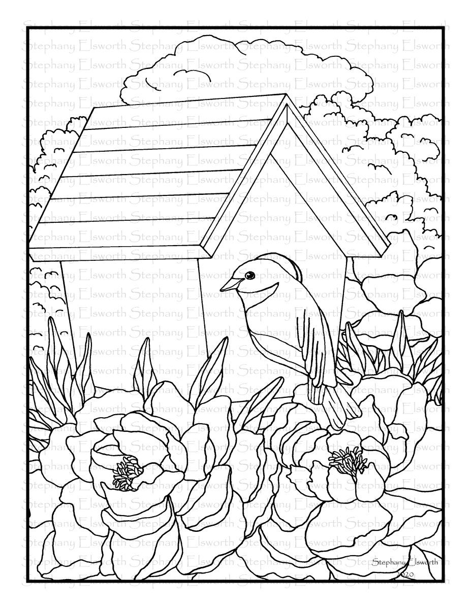 Bluebird And Peonies Free Printable Coloring Page Printable