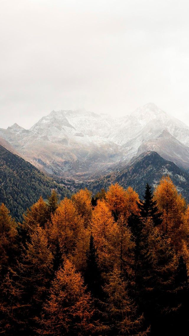 Autumn wallpaper mountains mobile iphone