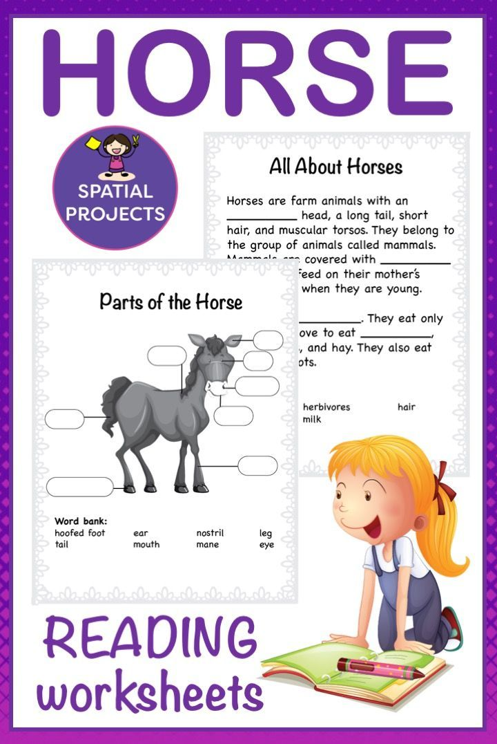 All About Horses Nonfiction Unit | Writing activities ...