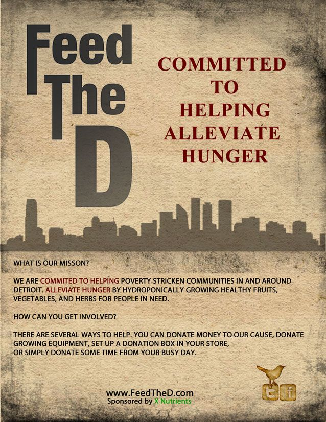 Feed The D Charity Poster/Flyer ::