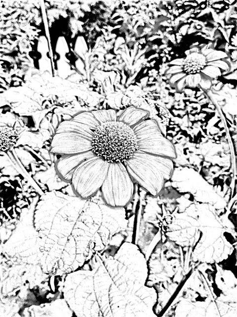 The Helpful Art Teacher A Garden Of Flowers Blending Colors Using Oil Pastels Flower Coloring Pages Oil Pastel Coloring Pages