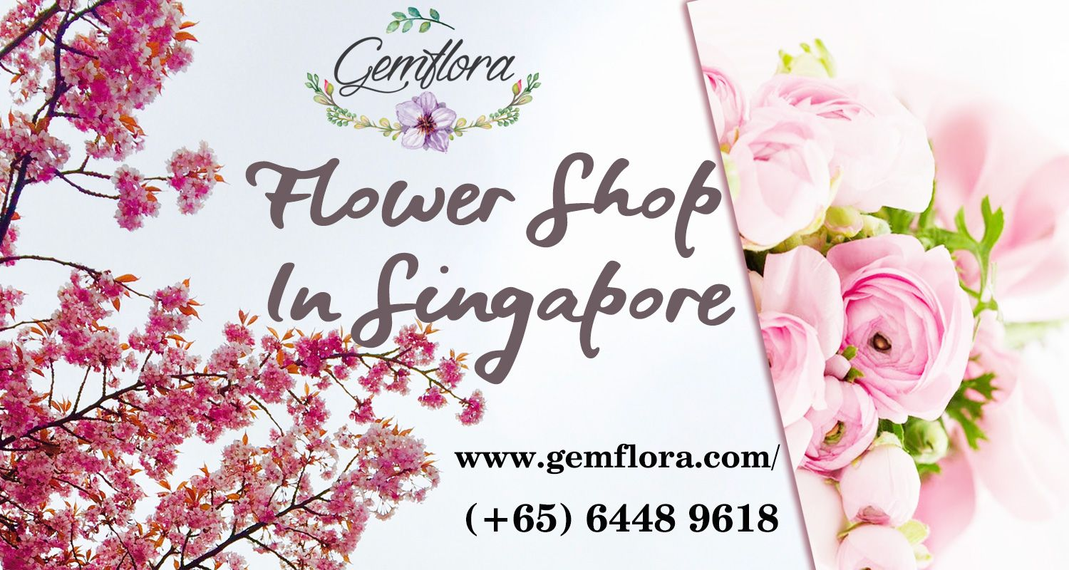 Gemflora is online shop getting Cheap and comfortable