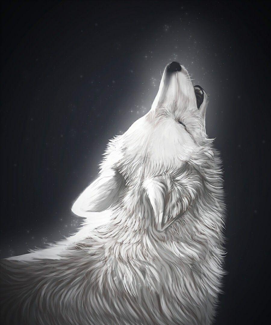 Beautiful Wolf Phone Wallpapers Beautiful Wolf Phone Wallpapers Wallpaper Wolf Iphone Wallpaper Wolf Wolf Wallpapers