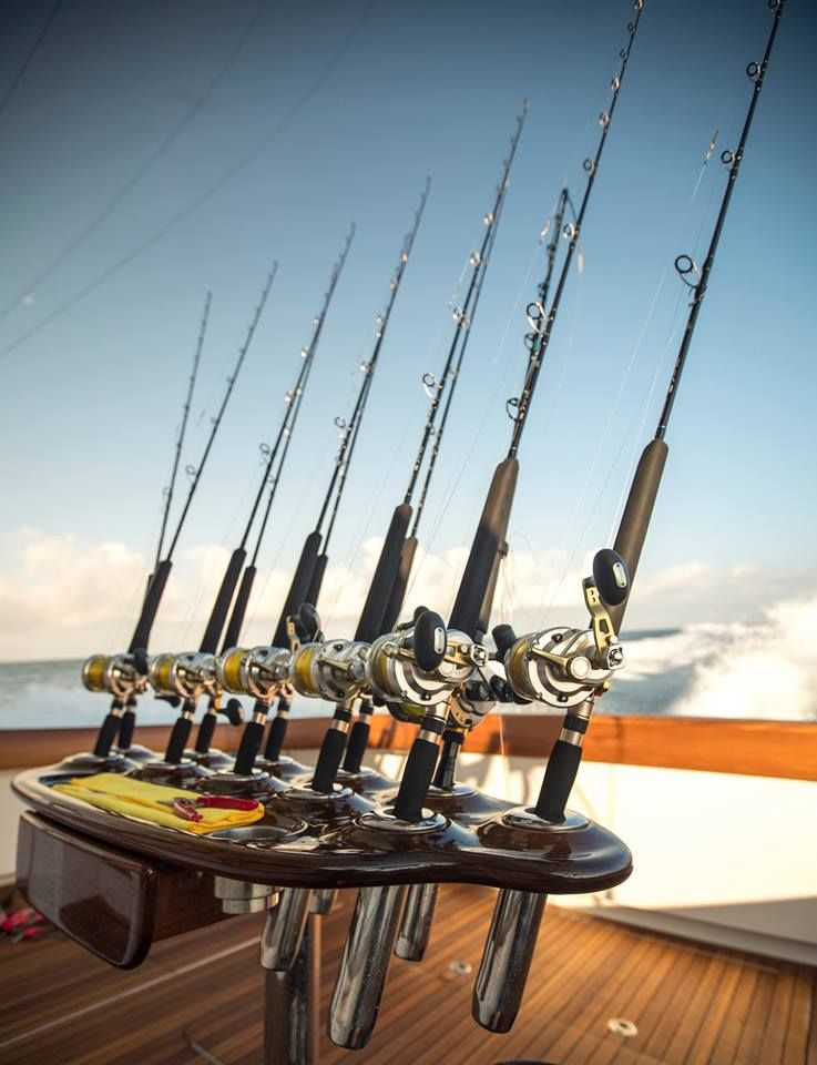 Pin by Marsha Graham on Rods and Reels Saltwater fishing